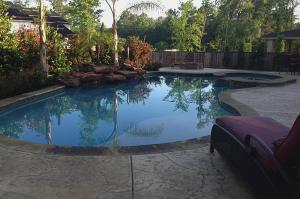 ultimate-jungle-pool1